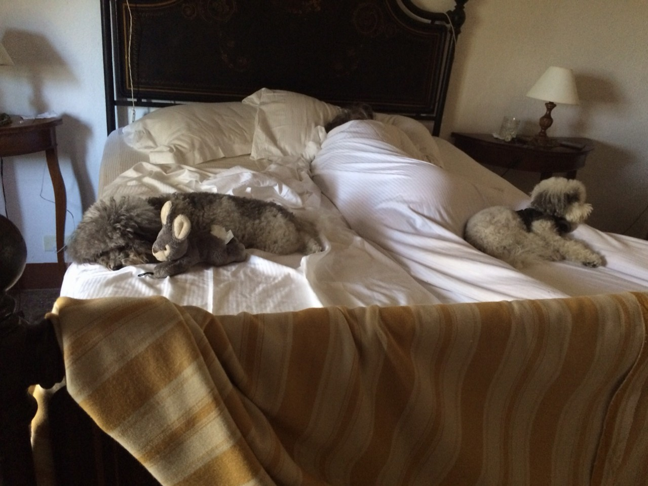 This is virtually the same picture I posted when we got to Sam Francisco.  Only different country and different bed.