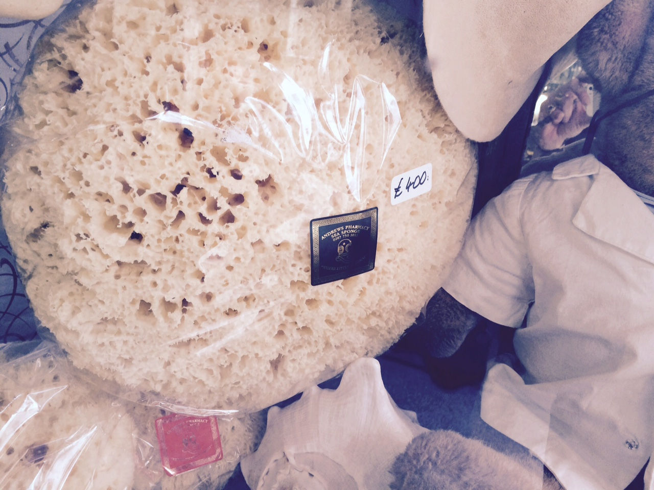 Sponge in posh Chelsea shop.  Price: 400 pounds, about $560.  A BLOODY SPONGE (albeit rather large).