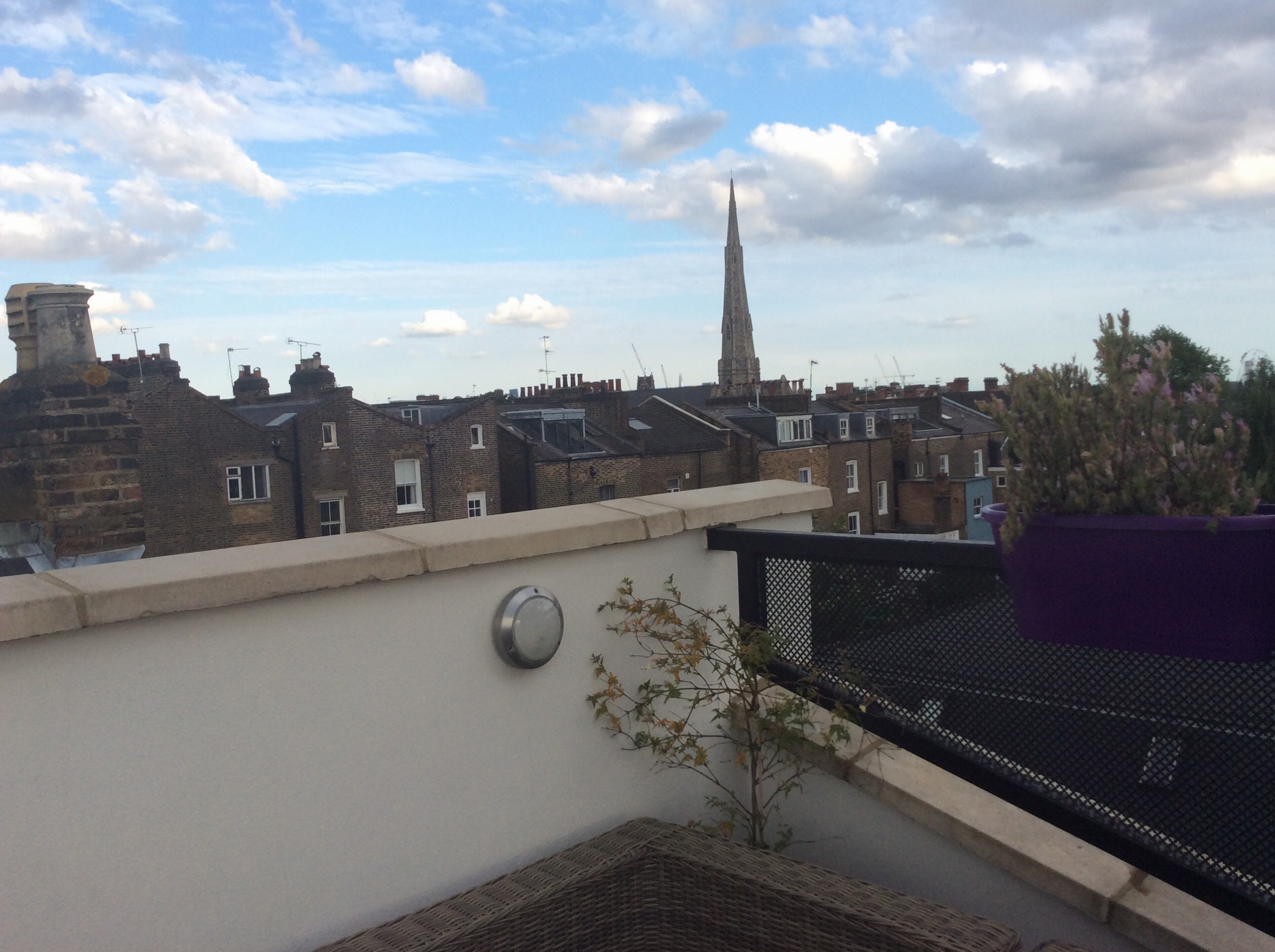 Looking south from Nicky's beautiful roof garden in Kentish Town (London)