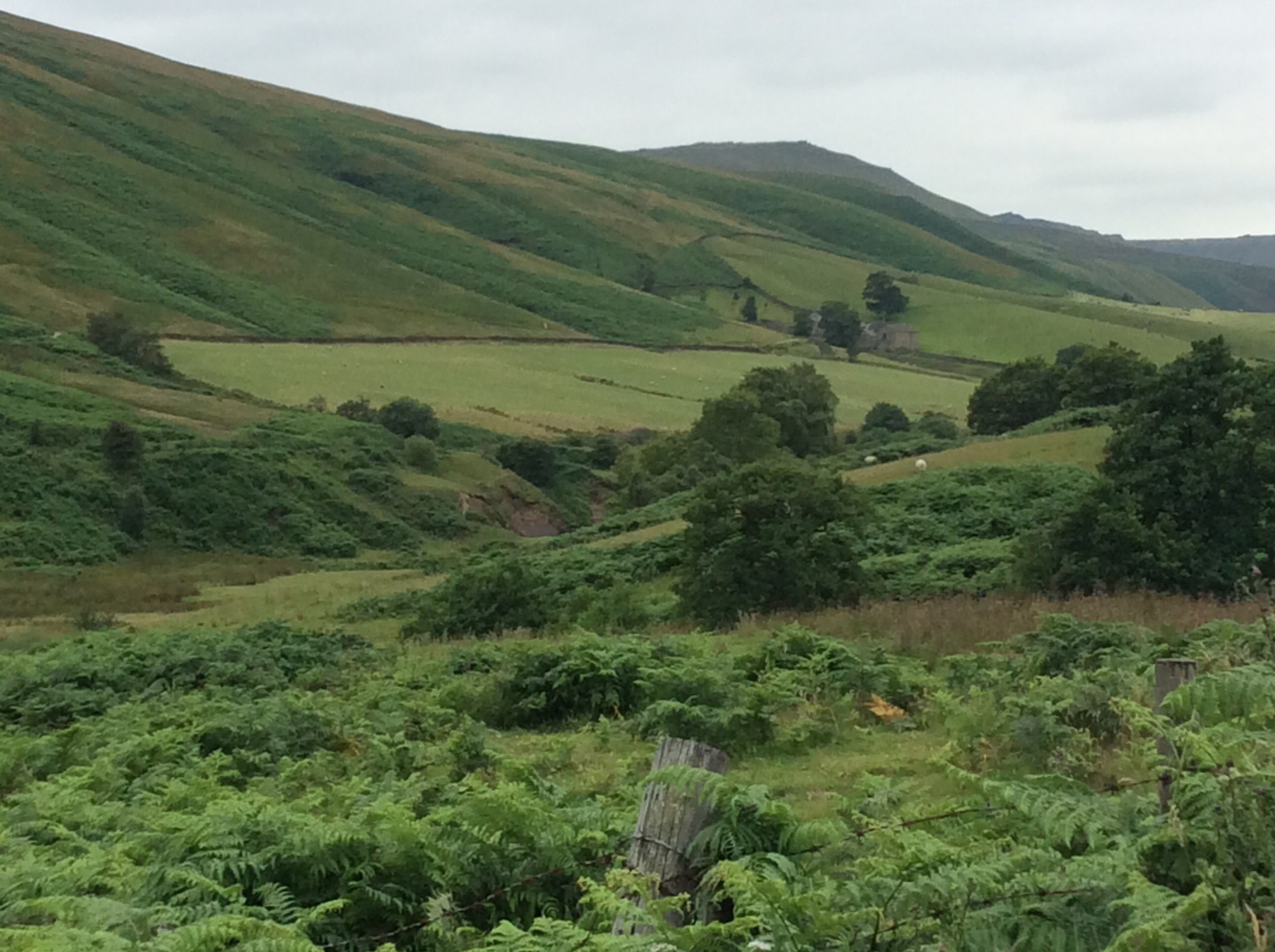 Spectacular countryside near Chatsworth House.
